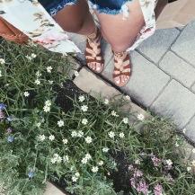 Flower Love ❤︎