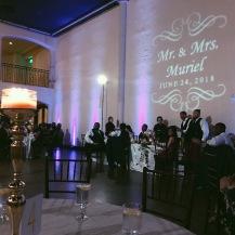 Muriel Wedding 2018